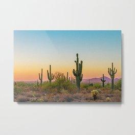 Desert / Scottsdale, Arizona Metal Print