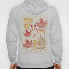 Autumn Dry Leaves Hoody