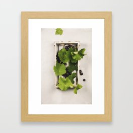 Fresh grape in wooden box. Top view, beton background Framed Art Print