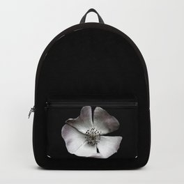 A delicate and sheer rosehip. Backpack
