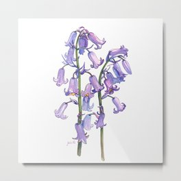 English Bluebells Metal Print