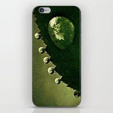 Leaf Drops iPhone & iPod Skin