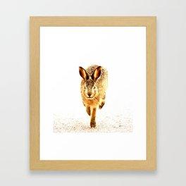 Wait For Me Guys! Hare running #decor #society6 Framed Art Print