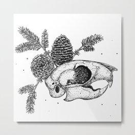 Squirrel Anatomy Metal Print