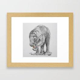 Baby Elephant with Flower Framed Art Print