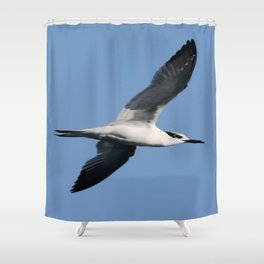Sandwich Tern In Flight Vector Shower Curtain
