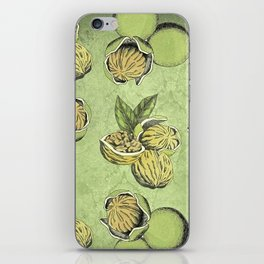 Walnuts Faded Lime Color iPhone Skin