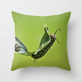 Monarch Caterpillars Throw Pillow