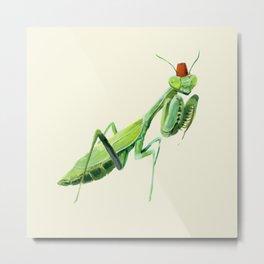 Mantis with a Fez Metal Print