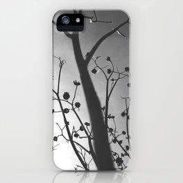 Pixies Twilight Whimsy iPhone Case