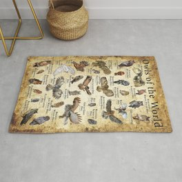 Owls of the World Rug