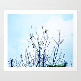 Goldfinches in a Tree Art Print