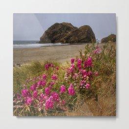 Pacific Coast Wildflowers - Meyers Beach, Oregon Metal Print