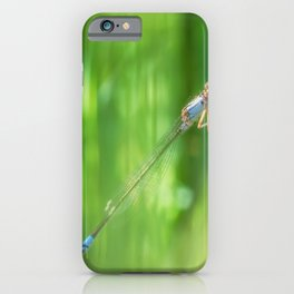 Damselfly iPhone Case
