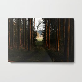the passage  Metal Print