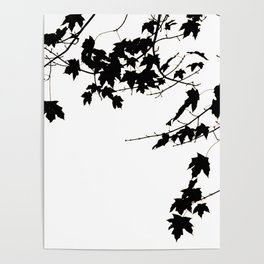 Silhouette Leaves Poster