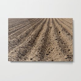 plowed land,  furrows Metal Print