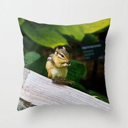 Chipmunk Chow Time Throw Pillow