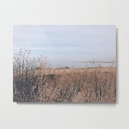 BLUE MOON III / Alviso, California Metal Print