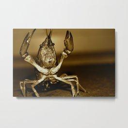 Crawlfish Metal Print