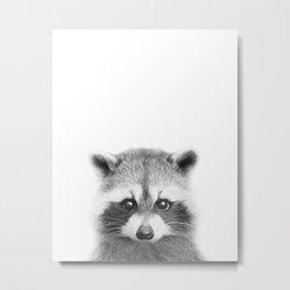 Baby Raccoon Black & White Art Print, by Zouzounio Art Metal Print