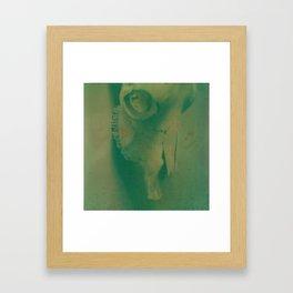 Cow Skull Polaroid Framed Art Print