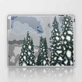 A Blue and Grey Day in Winter Laptop & iPad Skin