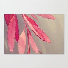 Red Cactus Canvas Print