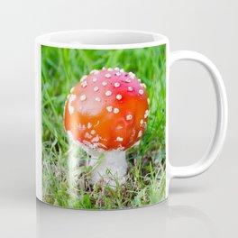 Fly agaric square Coffee Mug