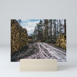 Poltery Site (Wood Storage Area) After Storm Victoria Möhne Forest 5 Mini Art Print