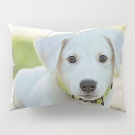 Poppy | Chiot Pillow Sham