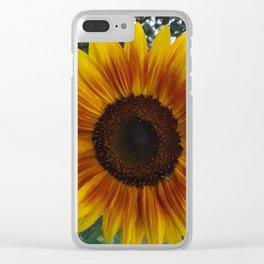 Good Morning, Sunshine! Clear iPhone Case