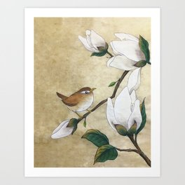 Minhwa: A Wren on the Magnolia(Korean traditional/folk art) Art Print