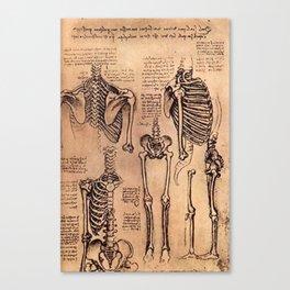 Study of Skeletons - Leonardo da Vinci Canvas Print