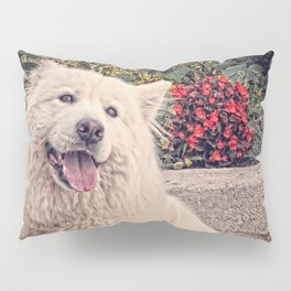 Angel In Disguise II Pillow Sham