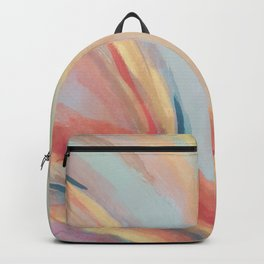 Inside the Rainbow Backpack
