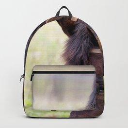 Watercolor Horse 62, Morven Park, Virginia, Grazing Daze Backpack