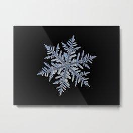Real snowflake - Silverware black Metal Print