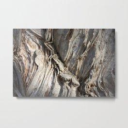 Soft Bark Metal Print