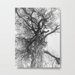 Ancestral Metal Print
