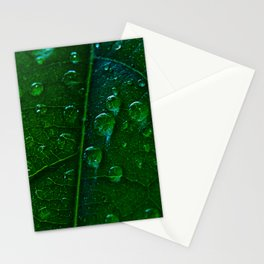 Green Bubbles Stationery Cards