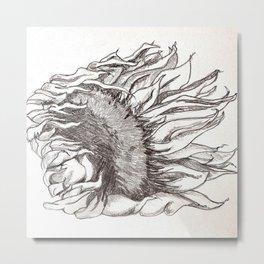 sunflower black and white Metal Print