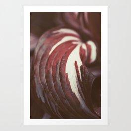 Elegant Soft Pink Leaf, Botanical Abstract Wall Art 01 Art Print