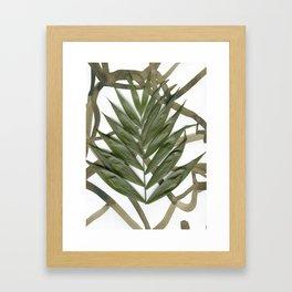 Botanicali Nr. 1 (I heard they love fun trees) Framed Art Print