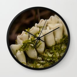 Moss Growing in Dead Deer Teeth #1 Wall Clock