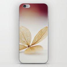 Sheer iPhone & iPod Skin