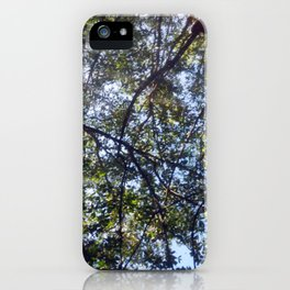 Branches, Too iPhone Case