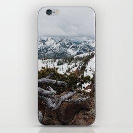 Wenatchee National Forest iPhone Skin