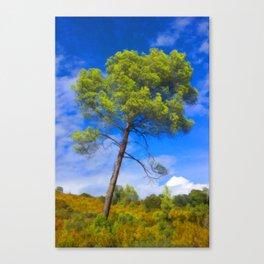 PineTree Canvas Print