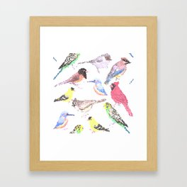 colorful birds stained glass art- budgie cardinal goldfinch titmouse kingfisher cedar waxwing juncos Framed Art Print